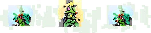Bozeman Christmas Trees - Cashman Nursery 2010