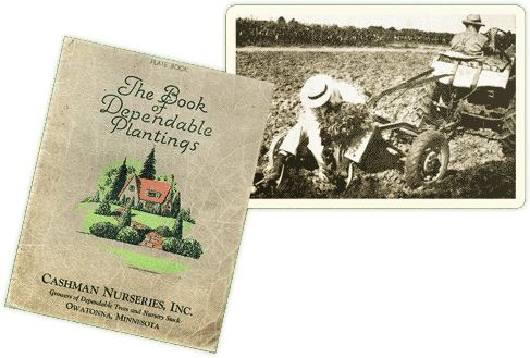 Cashman Nurseries, Inc. - The Book of Dependable Plantings