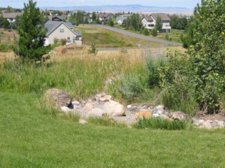 A dry creek bed creates a transition between mowed, watered and maintained turf and the native grass area beyond.