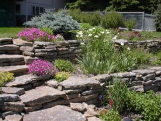 Stone walls and steps are softened with perennials