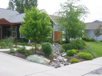 Taken in June 2008, this photo illustrates how much impact you can get in just a few years by combining perennials and grasses with trees and shrubs. Trees are planned to be in the landscape forever, shrubs for at least 15 years. Grasses & perennials give you satisfaction in the short term and they can be divided, replanted or simply removed as the longer-lived plants mature.